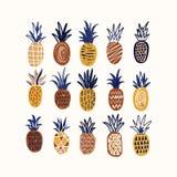 构成用各种各样的纹理风格化菠萝在白色背景的 汇集的可口甜异乎寻常新鲜 向量例证