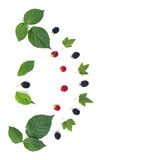 构成莓果和叶子 图库摄影