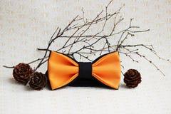 构成:与一个黑蝶形领结的从落叶松属的桔子,锥体和在米黄背景的一根枝杈 免版税库存照片