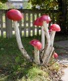 构成从垃圾的蘑菇草甸 免版税库存照片