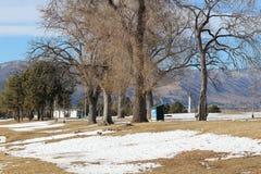 结构树和雪 库存照片