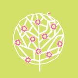 结构树在春天 图库摄影
