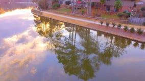 结构树在水中 免版税库存照片