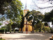 结构树的教会 库存图片