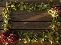 构筑丝毫老木地板,并且秋叶落和花 库存图片