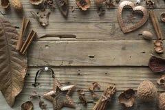 构筑干燥叶子和古铜色圣诞节玩具的设计师 图库摄影