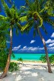 构筑海滩入口的两棵棕榈树对热带蓝色盐水湖 图库摄影