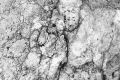 结构背景关闭详细资料石头纹理 图库摄影