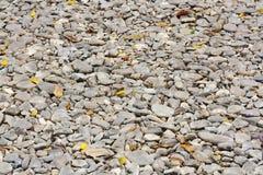 结构背景详细资料门面石头纹理 免版税库存图片