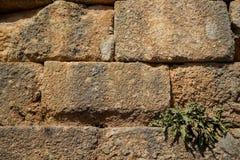 构造被风化的老自然坚硬石砖墙背景以与联接、毛面和绿色植物的黄色 免版税库存照片