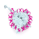 结构nucleosome 库存图片