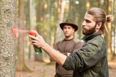 林业和林务员标记树在森林里 库存照片