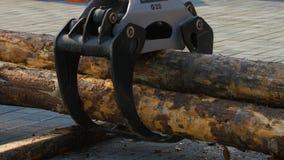 林业机载在站点着陆的一辆日志卡车 下来森林机器日志 免版税库存照片