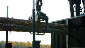 林业机载在站点着陆的一辆日志卡车 下来森林机器日志 免版税图库摄影
