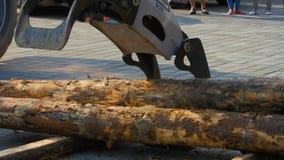林业机载在站点着陆的一辆日志卡车 下来森林机器日志 库存照片