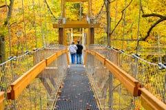 林冠层步行 库存图片