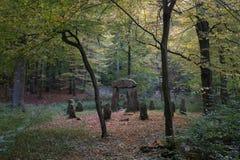 林务员纪念在Sonian森林里 免版税图库摄影