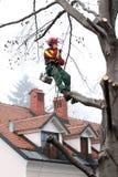 林务员谈话在一个手机,当他在一棵树在城市环境里时站立 图库摄影
