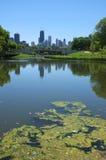 林肯公园 免版税库存照片