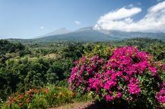 林贾尼火山一个遥远的看法  库存照片