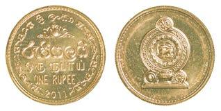 1枚斯里兰卡的卢比硬币 库存图片
