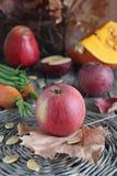 水果和蔬菜。 图库摄影