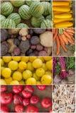 水果和蔬菜拼贴画 免版税库存照片