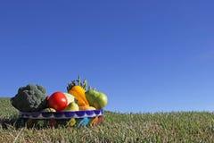 水果和蔬菜的分类在墨西哥黏土滚保龄球 免版税库存照片