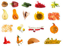 从水果和蔬菜的拼贴画在白色 库存图片