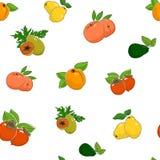 水果和蔬菜的无缝的样式 免版税图库摄影