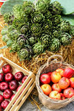 水果和蔬菜的美好的介绍 库存图片
