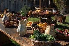 水果和蔬菜静物画 免版税库存照片