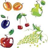 果子例证集合向量 免版税图库摄影