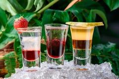 果子分层了堆积在冰的射击鸡尾酒,在绿色自然背景 关闭 查出 免版税库存图片