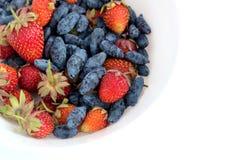 果子分类了盛肉盘用全部成熟开胃草莓,并且忍冬属植物隔绝了ob白色背景演播室射击关闭  库存图片