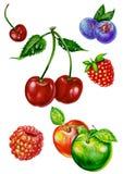 果子列表 库存照片