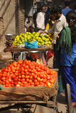 果子卖主。德里,印度。 库存图片