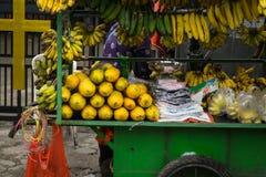果子卖主显示各种各样的种类异乎寻常的热带水果喜欢香蕉和番木瓜在德波拍的绿色推车照片 免版税图库摄影