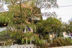 果子和开花的树在城市 库存照片