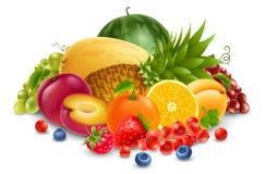 果子和浆果 免版税库存图片