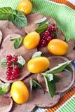 果子和浆果 图库摄影