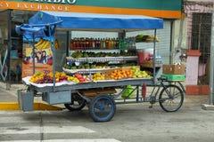 果子和苏打,利马,秘鲁一个巡回街道货摊的看法  免版税库存照片