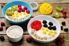 果子和莓果早餐燕麦粥粥 免版税图库摄影