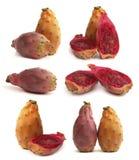 果子多刺仙人掌的梨 免版税库存图片
