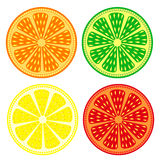 果子导航套柑橘:桔子,石灰,柠檬,葡萄柚,详细的象?隔绝在白色背景 免版税库存照片