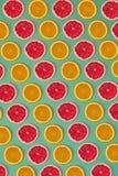 果子柑橘无缝的样式 免版税库存图片