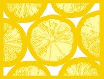 果子柠檬片式 免版税库存图片