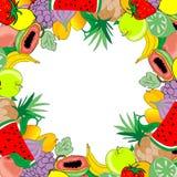 果子框架 库存照片