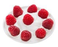 果子牌照莓红色成熟来回小 图库摄影