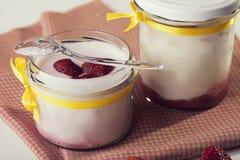 果子牛奶 从自然牛奶和草莓的酸奶 Spoo 免版税库存照片
